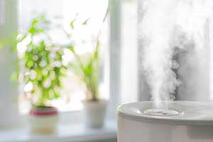 8 Everyday Ways to Improve Your Indoor Air Quality