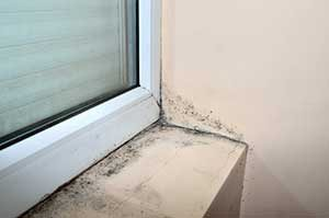 Perfect We Donu0027t Often Examine The Areas Around Our Windowsills, Even On The  Inside, But This Is A Common Place For Mold To Grow. Windows That Havenu0027t  Been Sealed ...