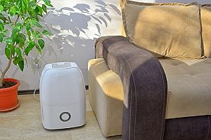 a dehumidifier in a home
